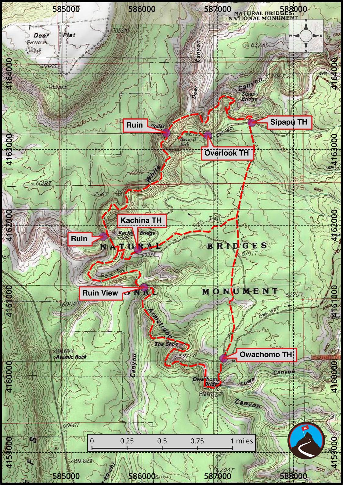 Hiking Natural Bridges National Monument Cedar